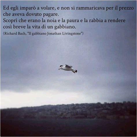 Gabbiano Jonathan Livingston by Il Gabbiano Jonathan Livingston Frasi Quotes Of The Day