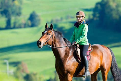 laminitis prone horse