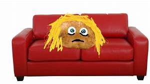 Couch patato 28 images laziness stacy bearden the blog for Couch potato sofa buddy