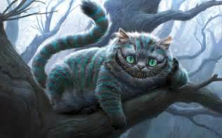 pictures of cheshire cat cheshire cat wallpapers hd wallpapers