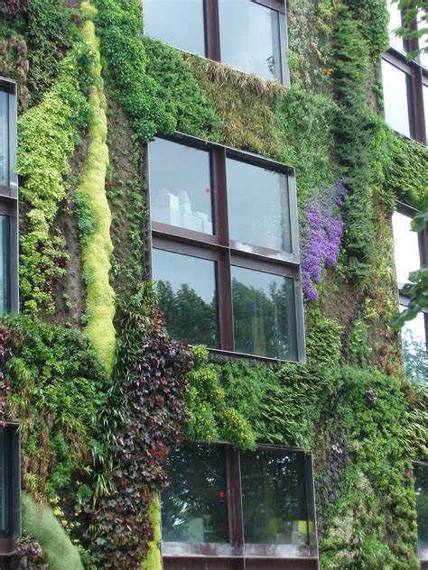 Build Vertical Garden by Uprooted Gardener How To Build Your Own Living Wall Or