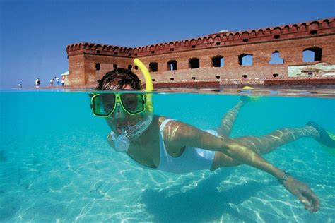 10 Great Spots for Snorkeling and Scuba Diving in Florida ...