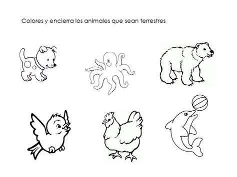 Collection Of Imagenes De Animales Terrestres Acuaticos Y Aereos