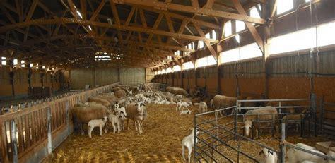 chèvrerie bergerie roiné