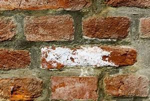 Probleme D Humidite Mur Interieur : salp tre des murs traitement des probl mes d 39 humidit de ~ Melissatoandfro.com Idées de Décoration