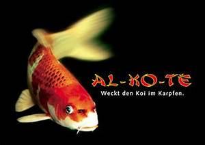 Al Ko Te :  ~ Orissabook.com Haus und Dekorationen