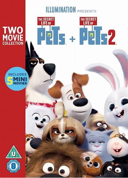 Pets Secret Dvd Box Hmv Studio Booko