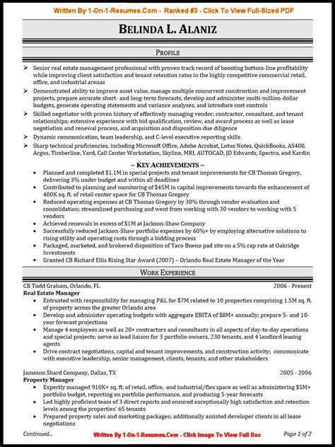 proffesional resume resume cv