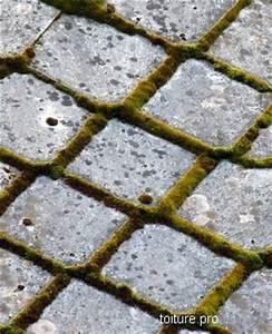Tarif Nettoyage Toiture Hydrofuge : d moussage de toiture les prix et les solutions 2019 ~ Melissatoandfro.com Idées de Décoration