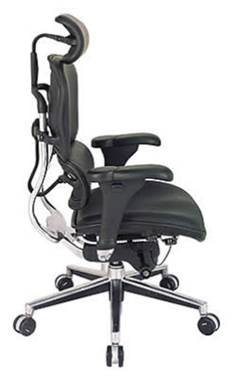 eurotech seating ergonomic office chair by the raynor
