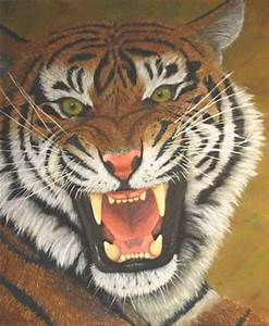 Drawn tigres growling tiger - Pencil and in color drawn ...