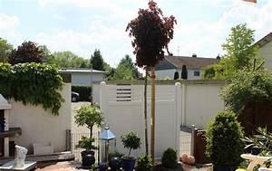 Schöner Sichtschutz Für Den Garten : sichtschutz aus kunststoff in astfichte ~ Sanjose-hotels-ca.com Haus und Dekorationen