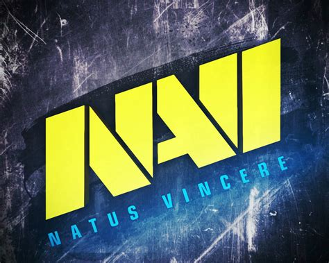 Counter Strike: Navi Professional Team (Counter Strike)