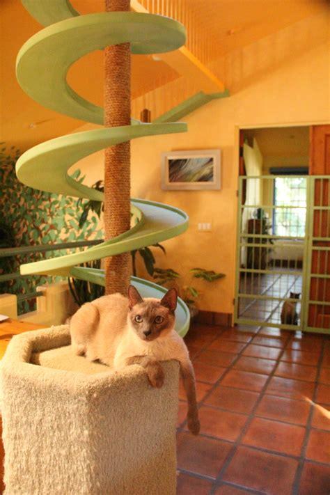 cat furniture cat climbing structures