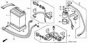 Honda Trx250tm Wiring Diagram