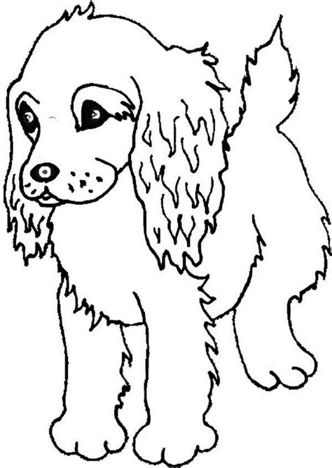 puppy coloring page boykin spaniel puppy coloring page free puppies coloring