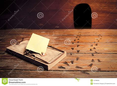 activated mousetrap  empty message stock photo image