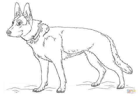 Ausmalbild Deutscher Schferhund Ausmalbilder Kostenlos