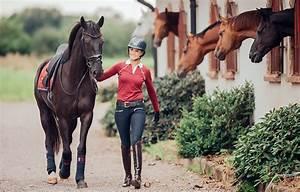 Sonoma Energy Medicine - equestrian-fashion-equestrian ...