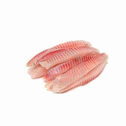 Fish Fillet Raw Packaging Type Restaurant Salmon