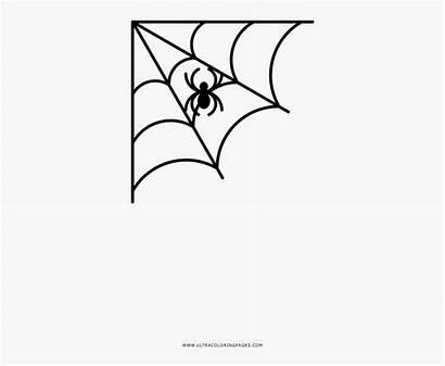 Spider Web Corner Coloring Vector Spiderweb Cartoon