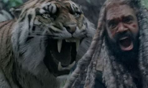 walking dead king ezekiel loses army  tiger shiva