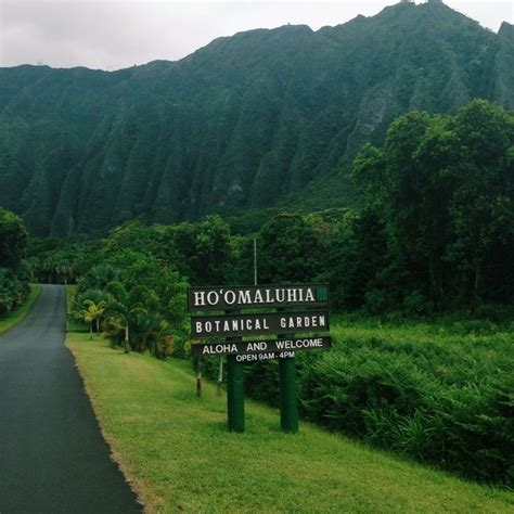 botanical gardens oahu 17 best images about travel on shore