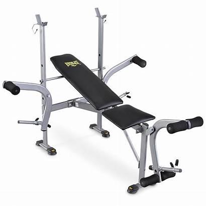 Bench Weight Everlast Press Leg Standard Ts
