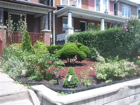 front landscaping plants front yard landscaping plants several great trees ideas homescorner com