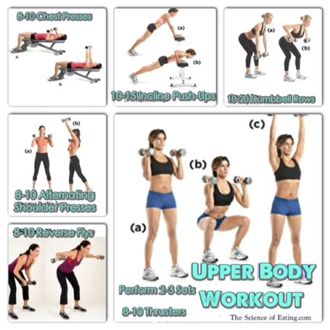 exercises workout upper body workouts dumbbells weight loss fat which chest toning kettlebells choose vs ultimate standing thigh routine therapy