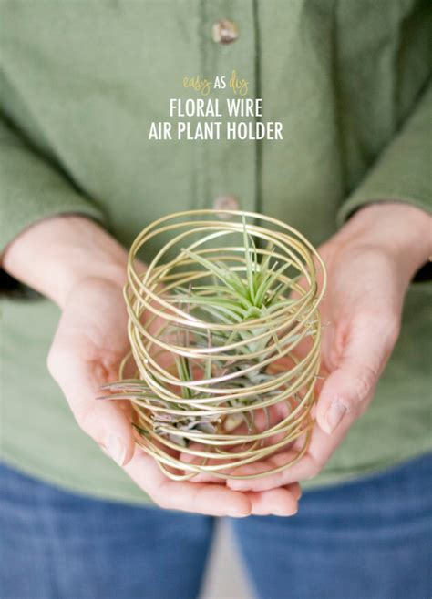easy     floral wire air plant holder air plants