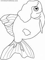 Goldfish Coloring Colouring Printables Document sketch template