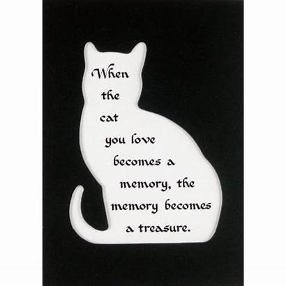 Memory Cat Quotes Loss Pet Cats Losing