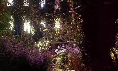 Garden Secret 1993 Flowers Flower 1990s Gifs
