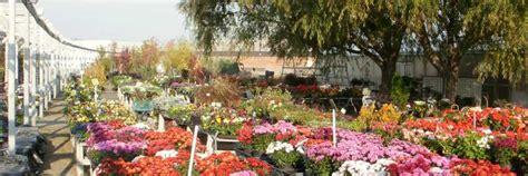 Tri-Cities Flower Farm