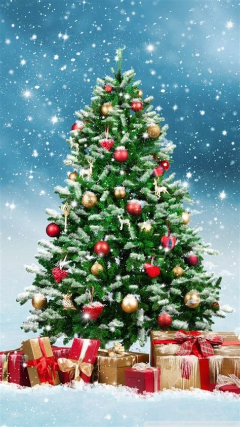 beautiful christmas tree   hd desktop wallpaper