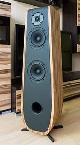 The Best Diy Speaker Kits Audiophile  U2013 Home  Family  Style