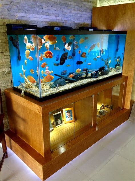 210 Gallons Fishtank Fish Tank Design Fish Tank Stand