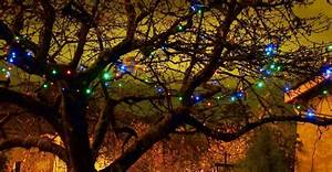 Guirlande Lumineuse Jardin : guirlande solaire multicolore 100 leds 11 8m ~ Melissatoandfro.com Idées de Décoration