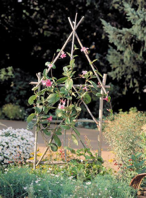 simple garden trellis sunset magazine