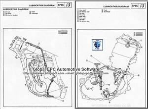 Auto Moto Repair Manuals  Yamaha Xtz660 Tenere 3yf 1991