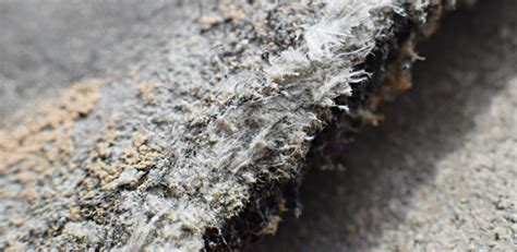 asbestos lung cancer claim nigel askew solicitors