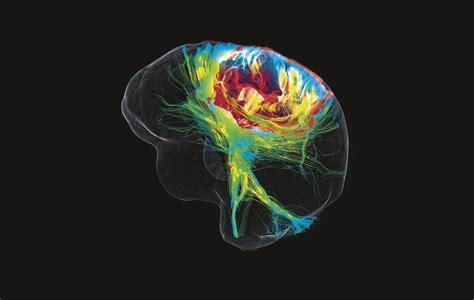 fotos de neuronas