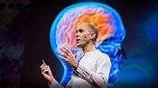 Neuroscientist explains how your brain hallucinates your ...