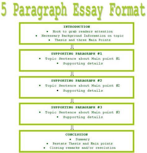 31+ Basic Essay Structure Example Background