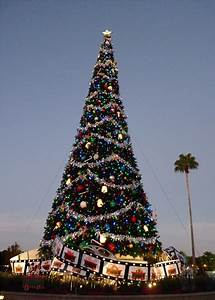 Disney Christmas Trees | Gorgeous with Attitude