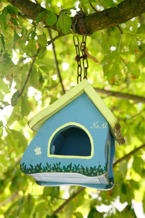 decorative painted outdoor wooden bird houses