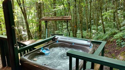 cabin rentals in colorado with tubs dragonfly cabin pet friendly smoky mountain vacation