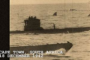 Megalodon Sightings South Africa