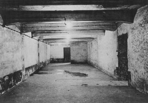 execution chambre a gaz how did the auschwitz i gas chamber look in january 1945